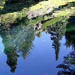 Ohme Gardens - Get High in Wenatchee